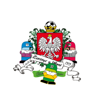 Polska moj wspanialy kraj grafika na koszulke meska 249