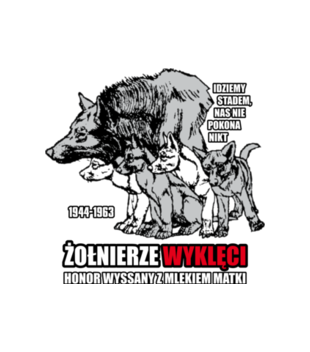 Krew honor ojczyzna grafika na bluze z kapturem meska 304