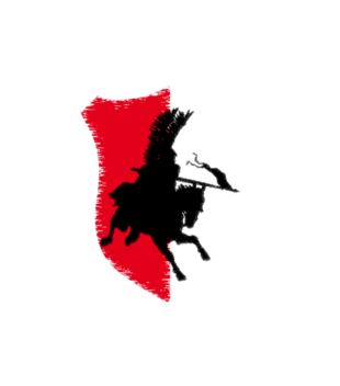Husaria polska moc grafika na koszulke damska 319