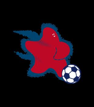 Gwiazda pilki noznej grafika na koszulke meska 327