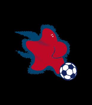 Gwiazda pilki noznej grafika na koszulke dziecieca 327