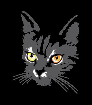 Koszulkowy kitty kat grafika na koszulke meska 414