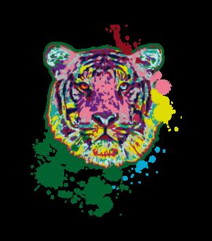 Print z kolorowym tygrysem grafika na koszulke meska 418