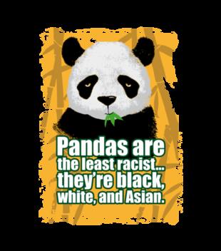 Wielorasowa panda grafika na koszulke dziecieca 419