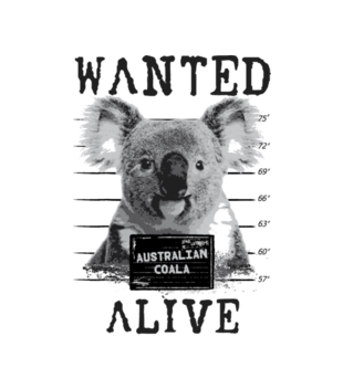 Gdzie jestes koalo grafika na koszulke meska 420