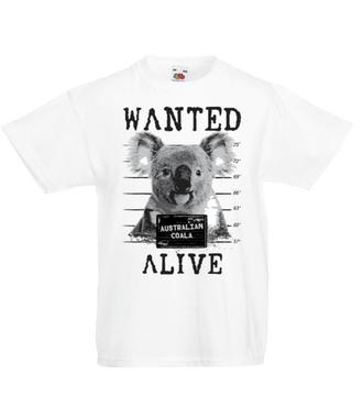 Gdzie jesteś, koalo? - Koszulka z nadrukiem - Zwierzęta - Dziecięca