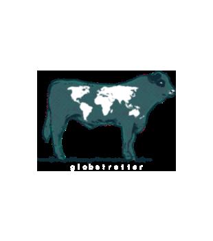 Na krowie sie nie miesci grafika na koszulke dziecieca 427
