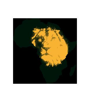 Kraina wielkiego lwa grafika na koszulke meska 428