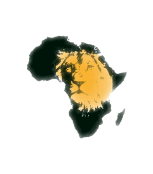 Kraina wielkiego lwa grafika na koszulke dziecieca 428