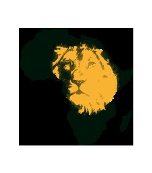 Kraina wielkiego lwa grafika na torbe 428