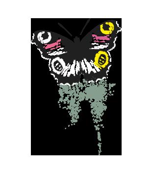 Motyla klasyka magia skrzydel grafika na koszulke dziecieca 431