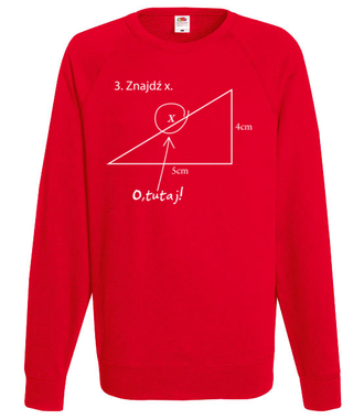Matematyka - królowa nauk. - Bluza z nadrukiem - Szkoła - Męska