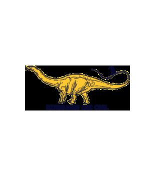 Dinozaury sa cool grafika na koszulke dziecieca 449
