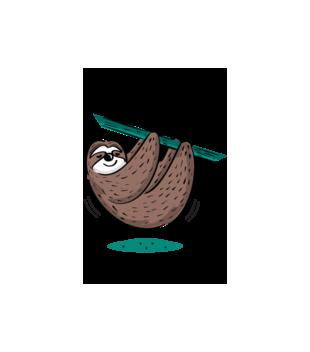 Urodziny na leniwca grafika na bluze z kapturem meska 778