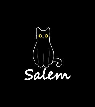 Salem kot z magia grafika na bluze z kapturem damska 1062