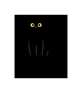 Salem kot z magia grafika na torbe 1061