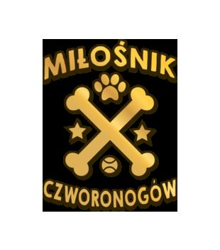 Koszulka z nadrukiem dla milosnikow psow grafika na koszulke dziecieca 1350